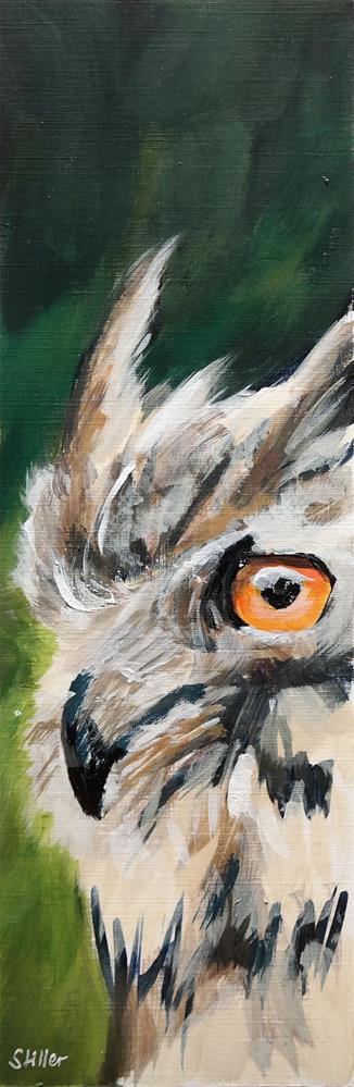 """""""2764 Owly"""" original fine art by Dietmar Stiller"""