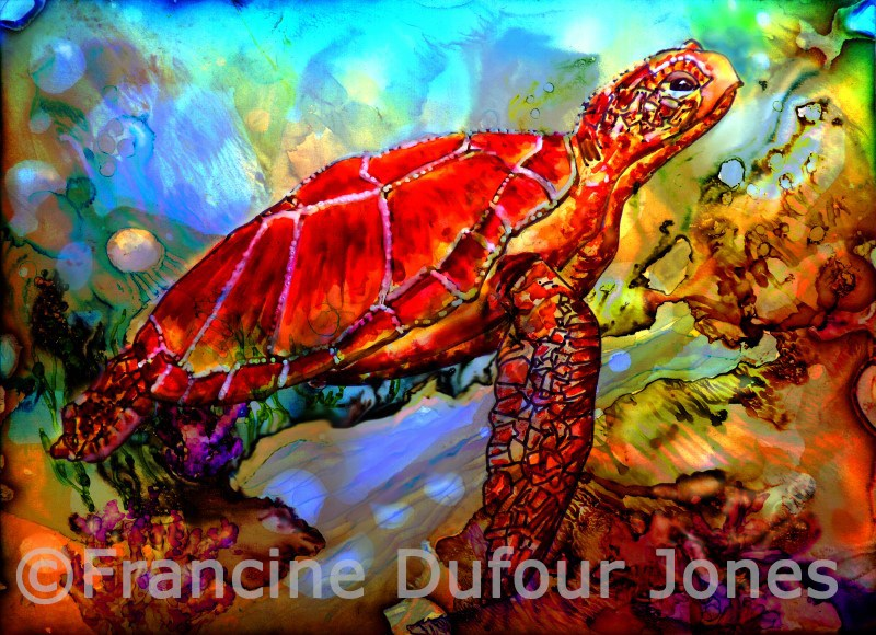 """Red Turtle"" original fine art by Francine Dufour~Jones"