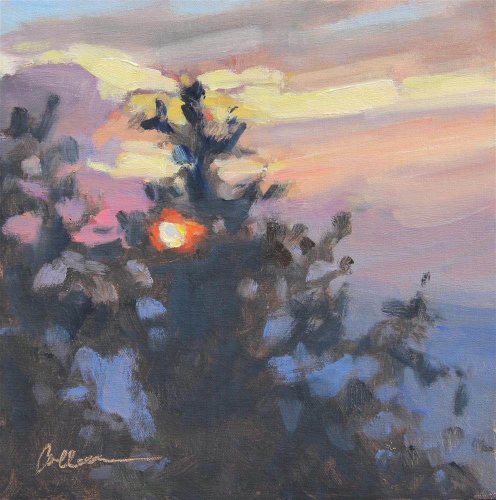 """""""Blue Ridge Sunset"""" original fine art by Colleen Parker"""