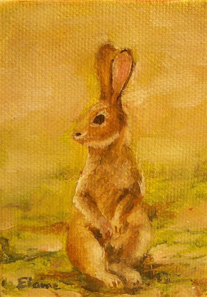 """""""Bunny"""" original fine art by Elaine Evans"""