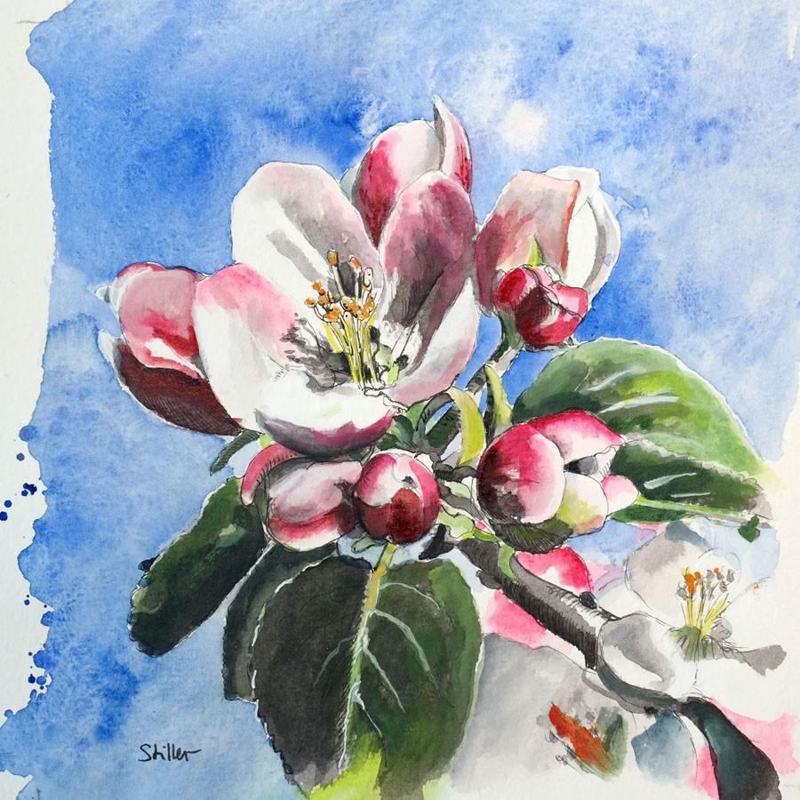 """""""3153 Apple Blossoms"""" original fine art by Dietmar Stiller"""