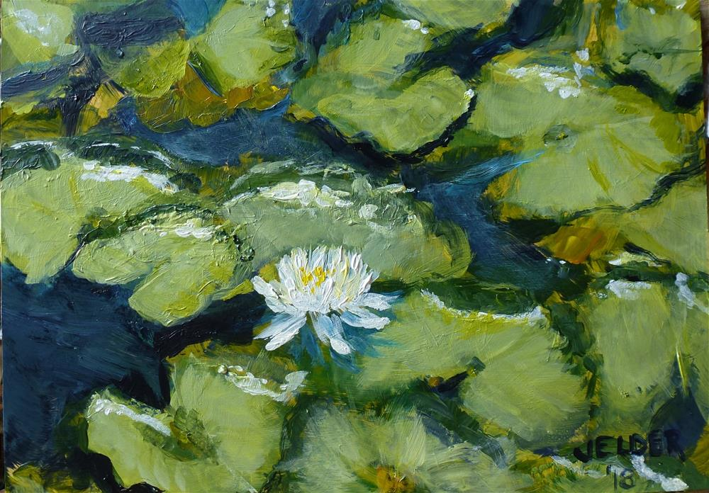 """Water Lily"" original fine art by Judith Elder"