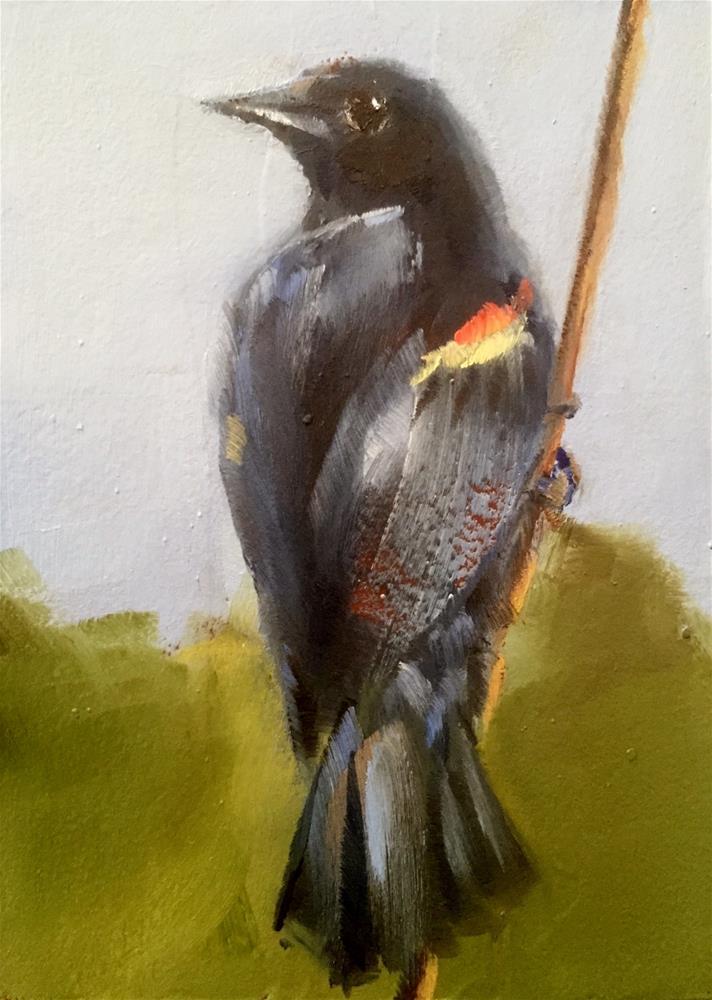 """""""Red Winged Blackbird"""" original fine art by Gary Bruton"""