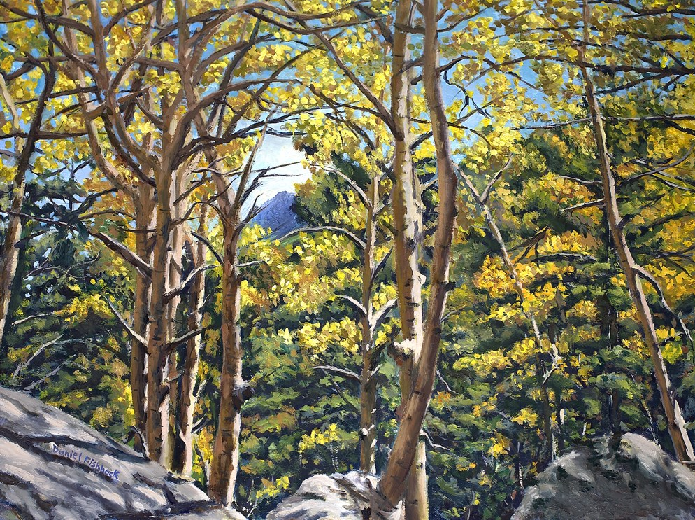 """Aspens in Estes"" original fine art by Daniel Fishback"