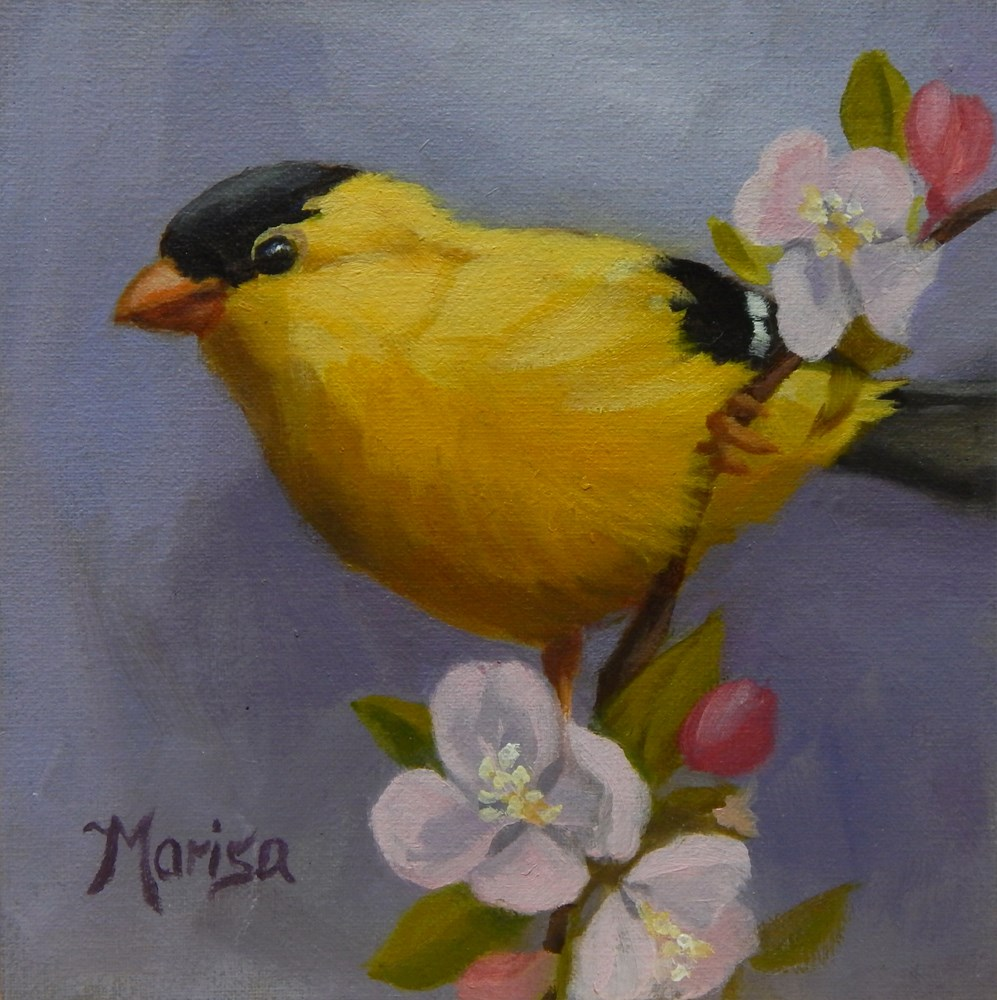 """""""The Goldfinch Dons His Yellow Jacket in the Spring"""" original fine art by Marisa Eichman Kupiec"""
