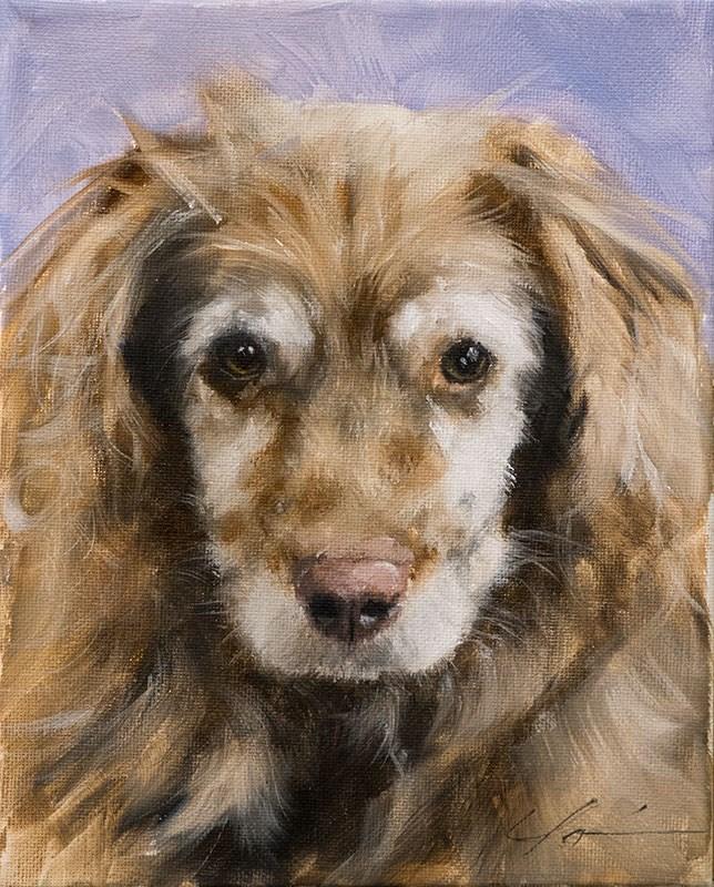 """""""PAINT MY DOG - Rhylee"""" original fine art by Clair Hartmann"""