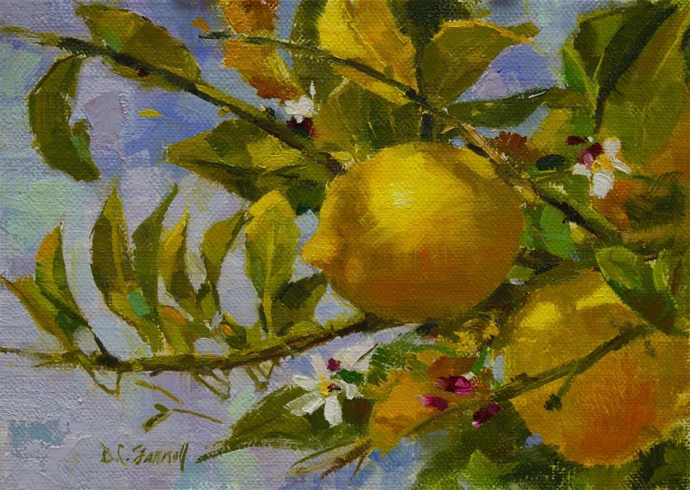 """Lemon Tree Branch"" original fine art by Donna C Farrell"