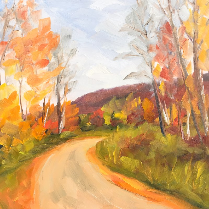 """#43 - Dirt Road - Late Autumn - Stowe, VT"" original fine art by Sara Gray"