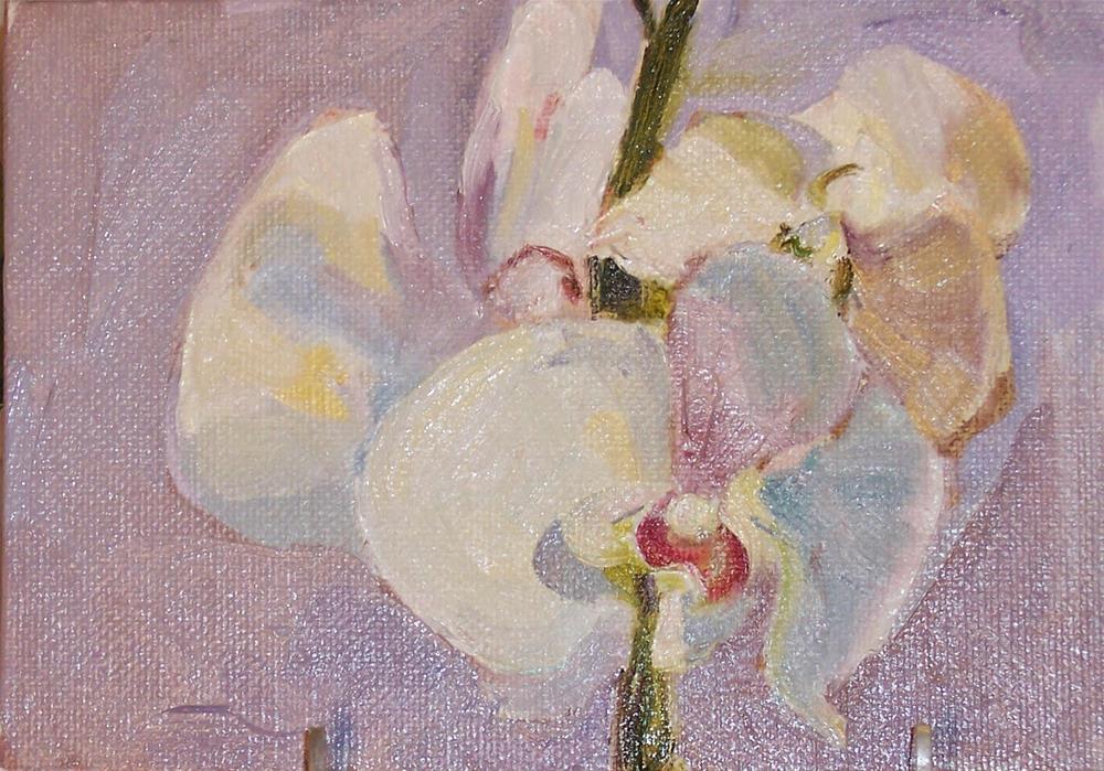 """Orchid,still life,oil on canvas.5x7,price$200"" original fine art by Joy Olney"
