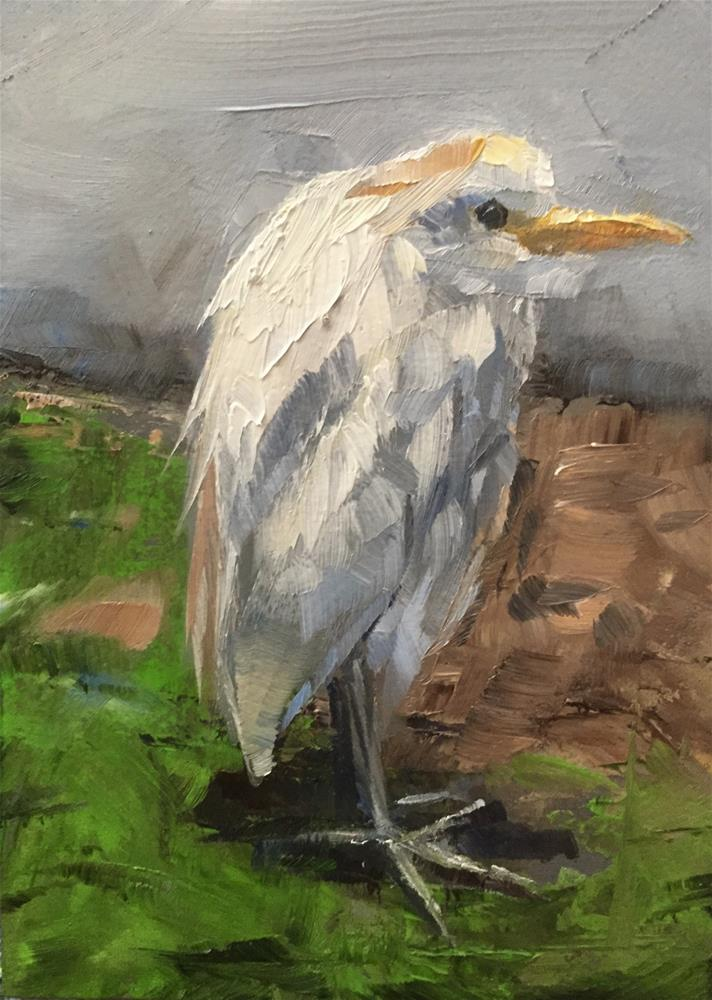 """""""Egret"""" original fine art by Gary Bruton"""