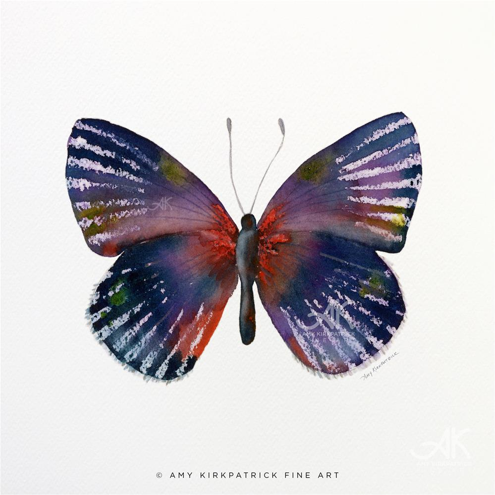 """#59 Noctula Butterfly #0369"" original fine art by Amy Kirkpatrick"