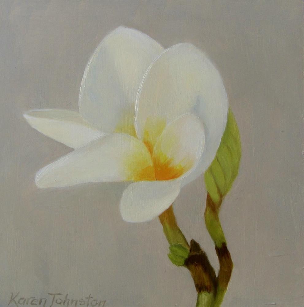 """Frangipani"" original fine art by Karen Johnston"