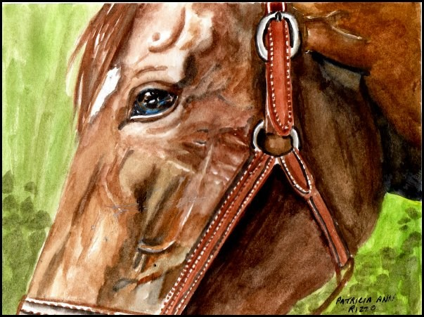 """The Thoroughbred"" original fine art by Patricia Ann Rizzo"