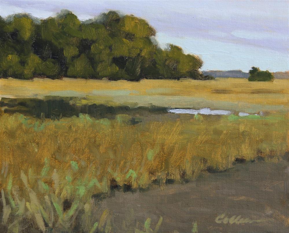 """Marsh Island"" original fine art by Colleen Parker"