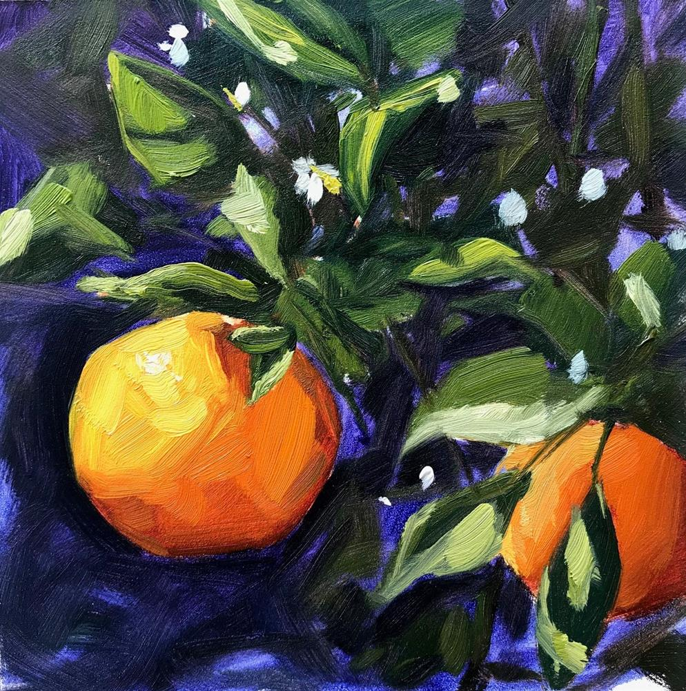 """Backyard Tangerines, Plein air oil painting"" original fine art by Sharon Schock"