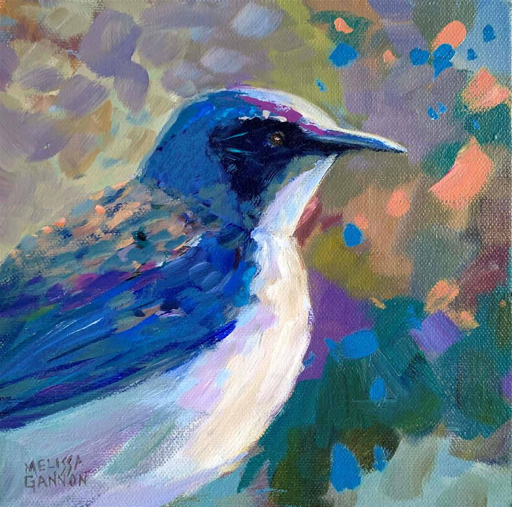 """Steller Jay"" original fine art by Melissa Gannon"
