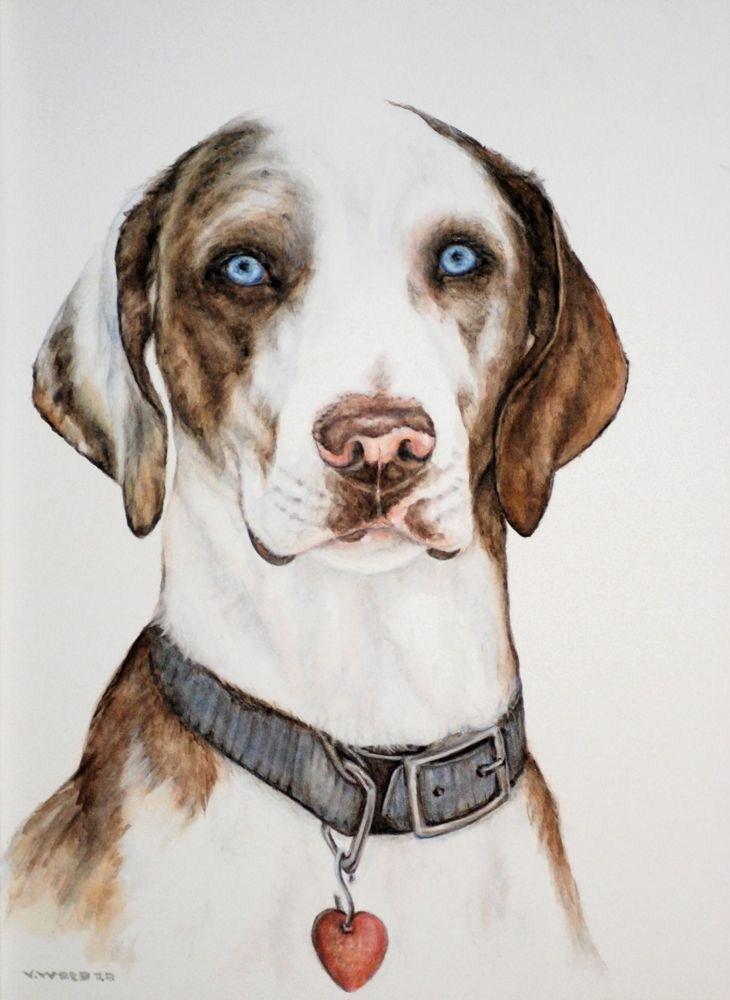 """Rufus, the Catahoula"" original fine art by Vicki Wood"