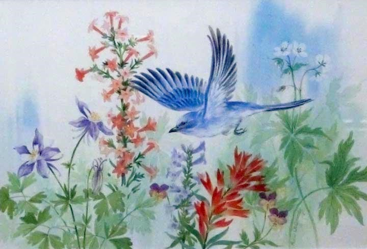 """""""Mountain Bluebird"""" original fine art by Jean Pierre DeBernay"""