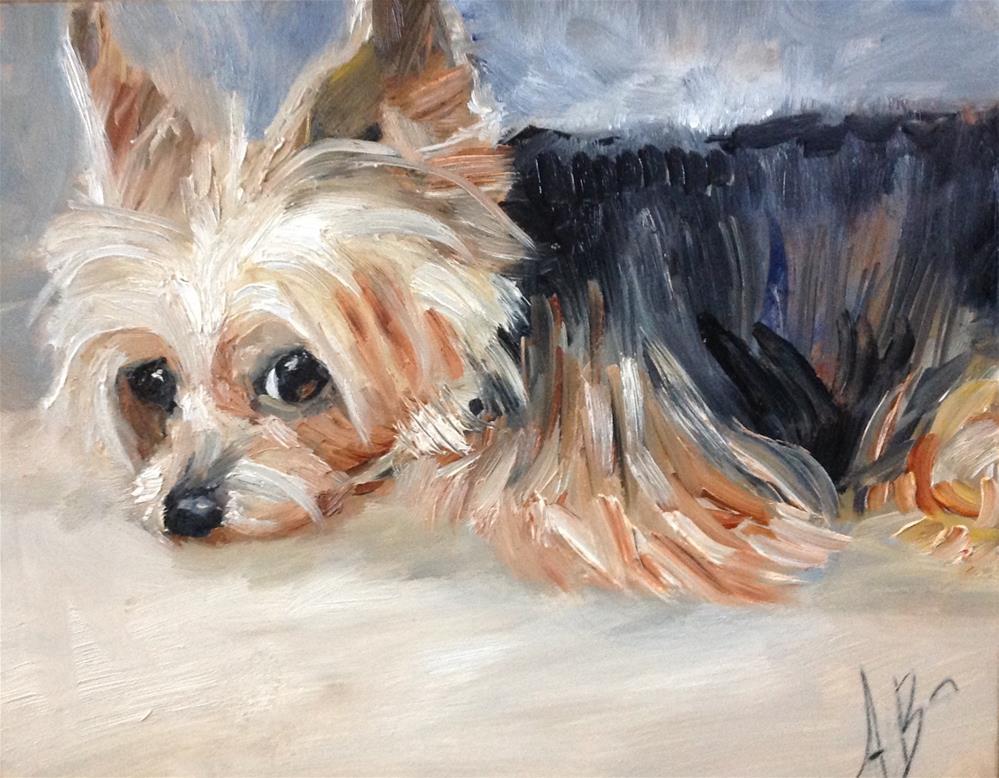 """""""Daisy Mae"""" original fine art by Annette Balesteri"""