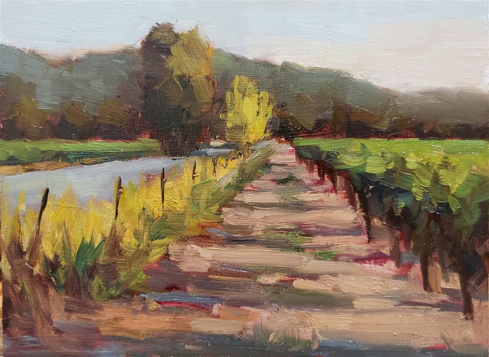 """Vineyard Sunset"" original fine art by Barbie Smith"