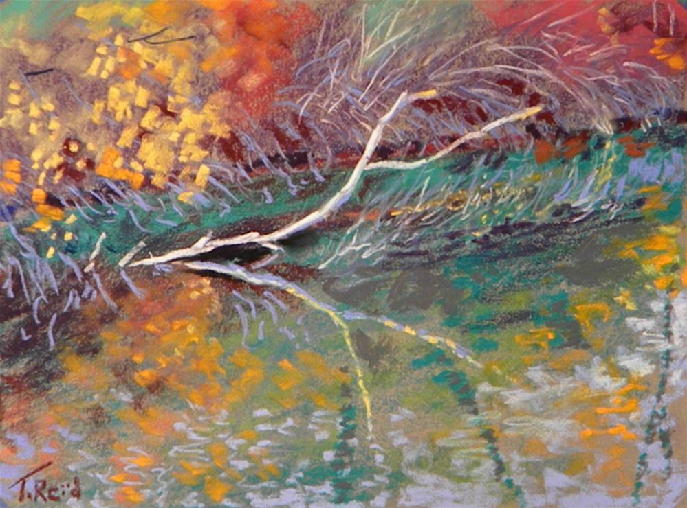 """Pond reflections"" original fine art by Toby Reid"