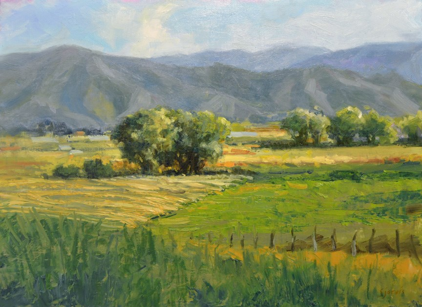 """Hayfields in July"" original fine art by Susan N Jarvis"