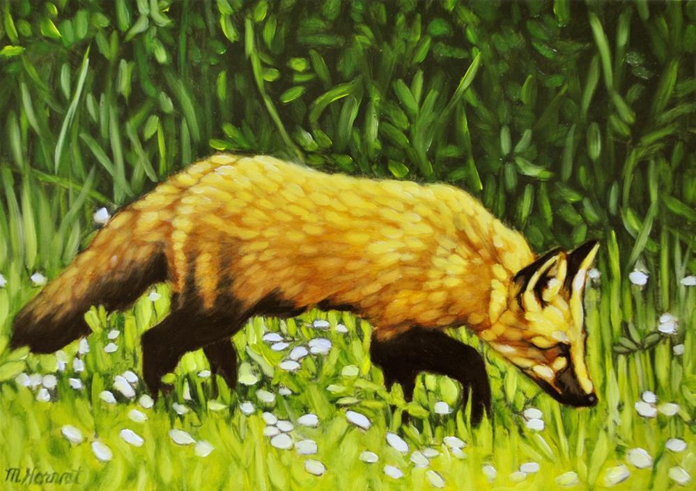 """Island Fox"" original fine art by Margaret Horvat"