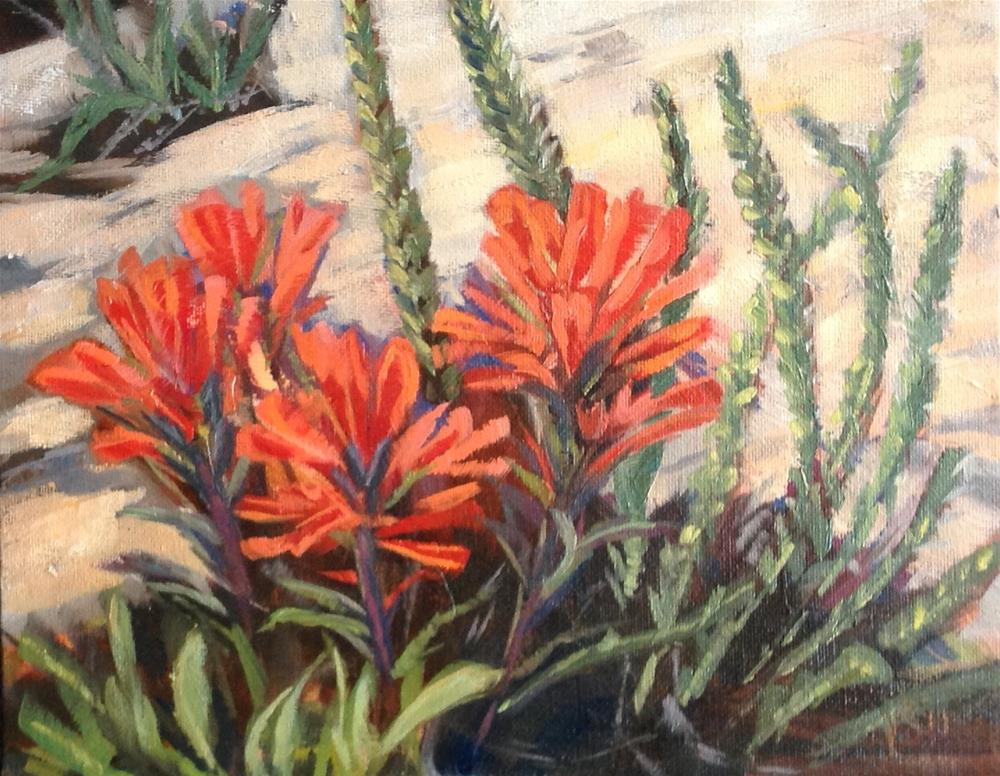 """Indian paintbrush"" original fine art by Valerie Orlemann"
