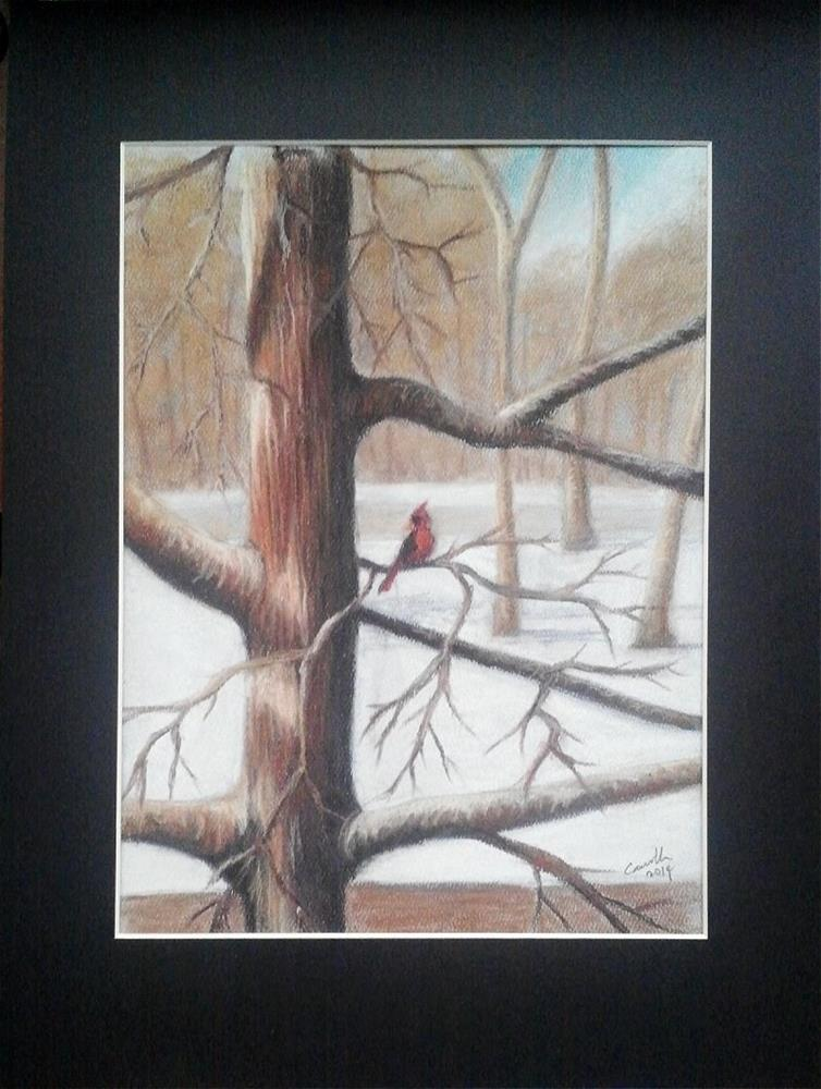 """Cardinal in Tree"" original fine art by Camille Morgan"