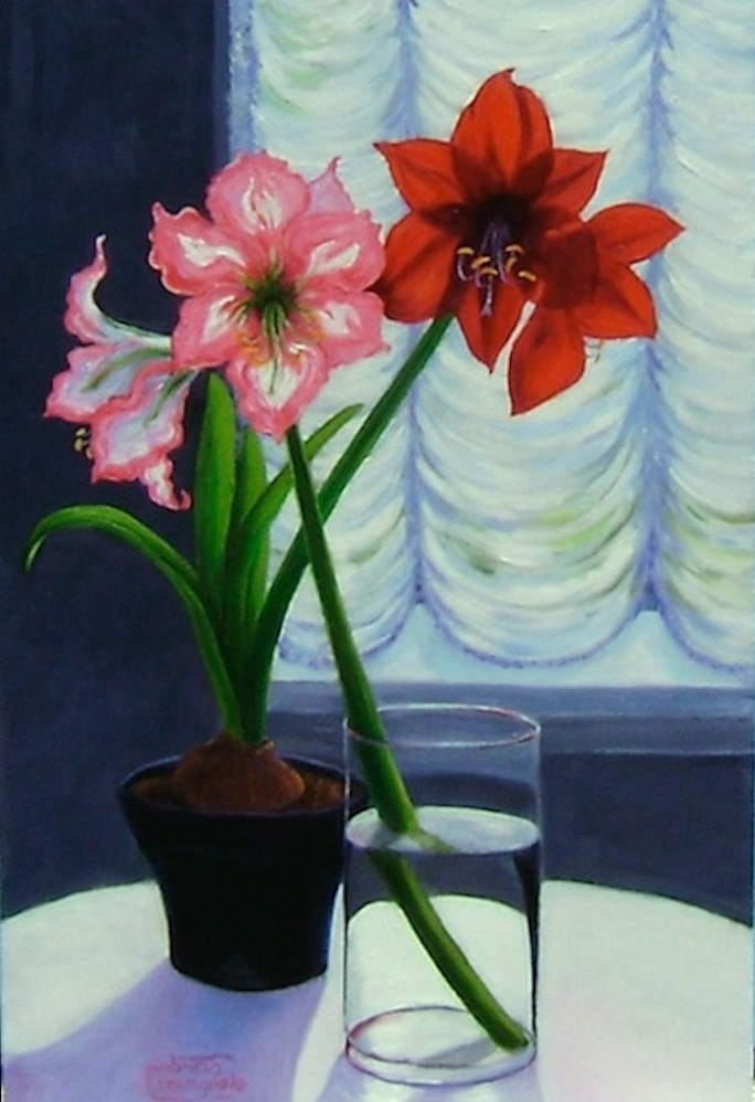 """Amaryllis"" original fine art by Patricia Musgrave"
