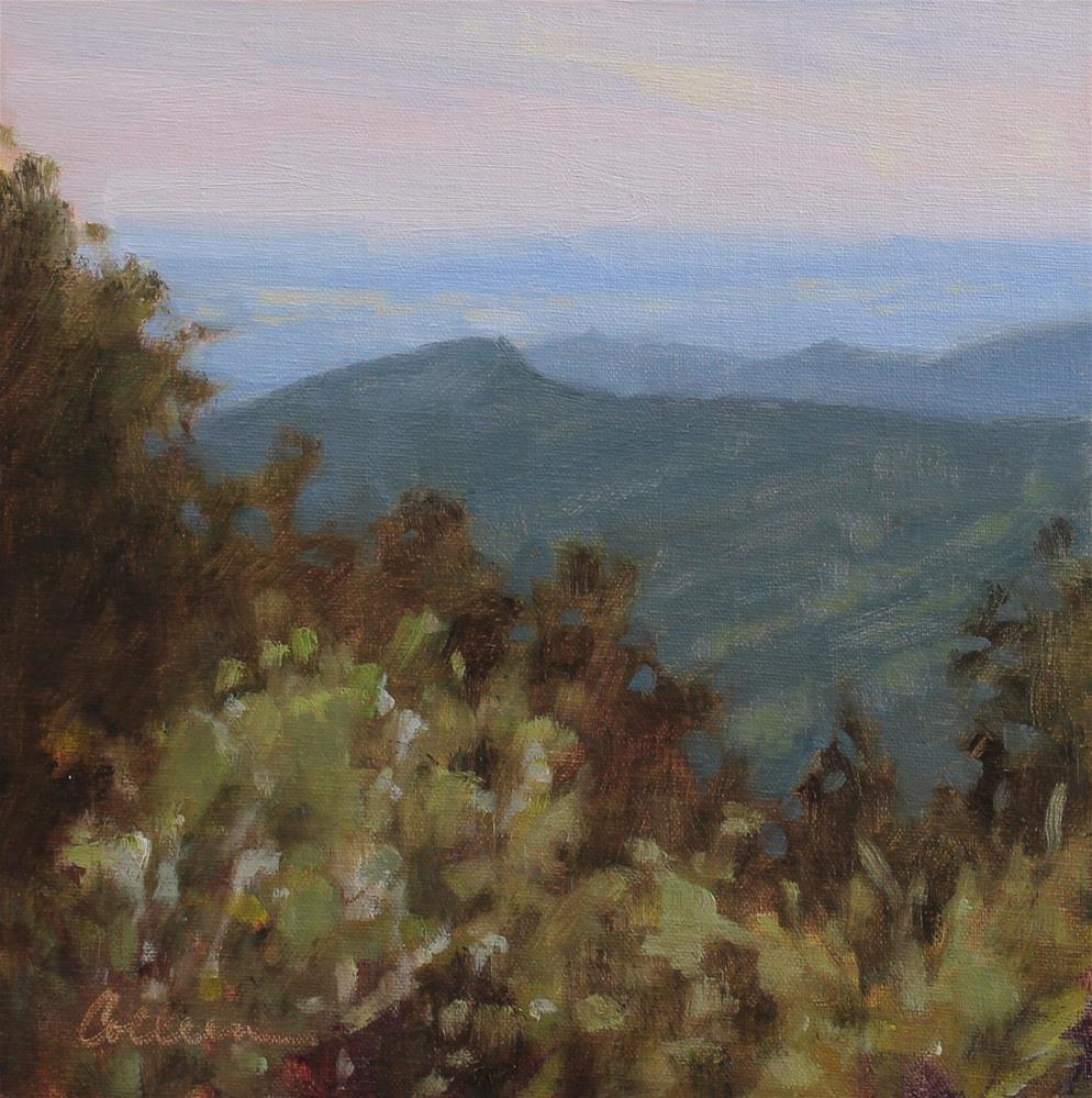 """Skyline Drive Overlook #3"" original fine art by Colleen Parker"