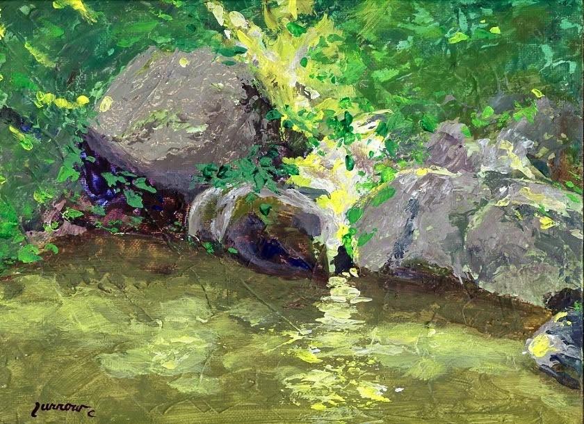 """Captured a SunSpot at Garst Mill"" original fine art by Sue Furrow"