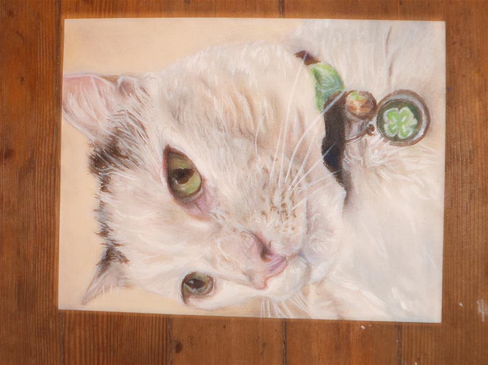 """""""White Kitty"""" original fine art by tara stephanos"""