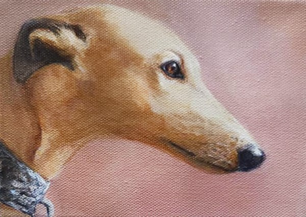 """Greyhound"" original fine art by Sunny Avocado"