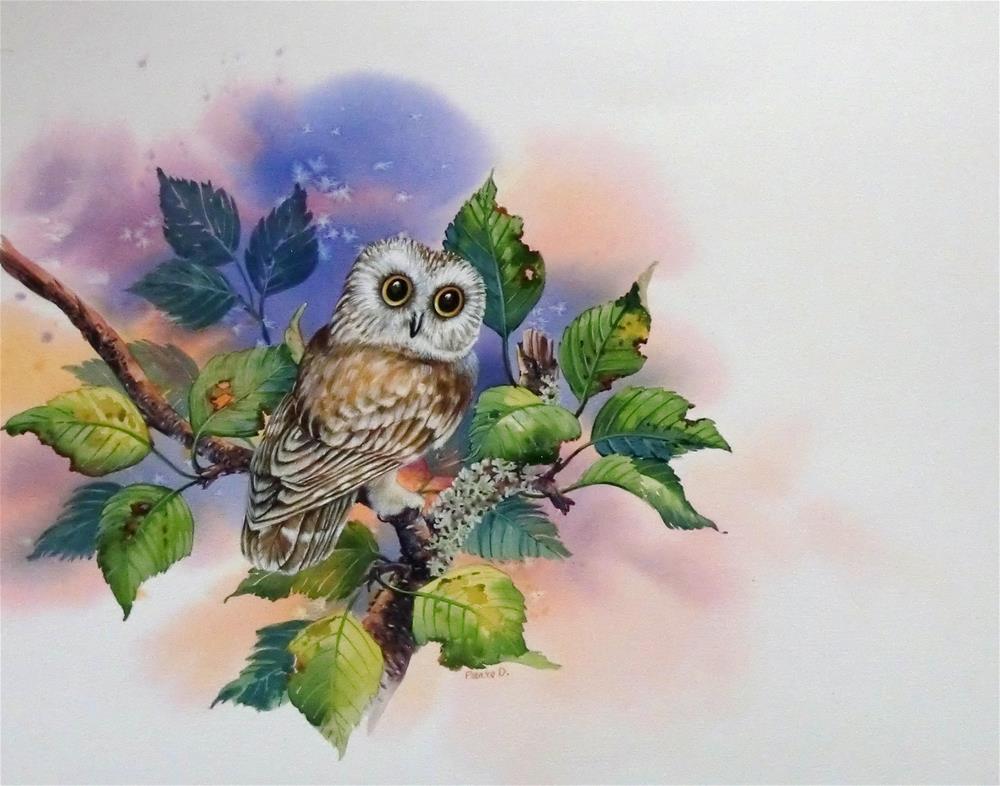 """""""Saw-Whet Owl"""" original fine art by Jean Pierre DeBernay"""
