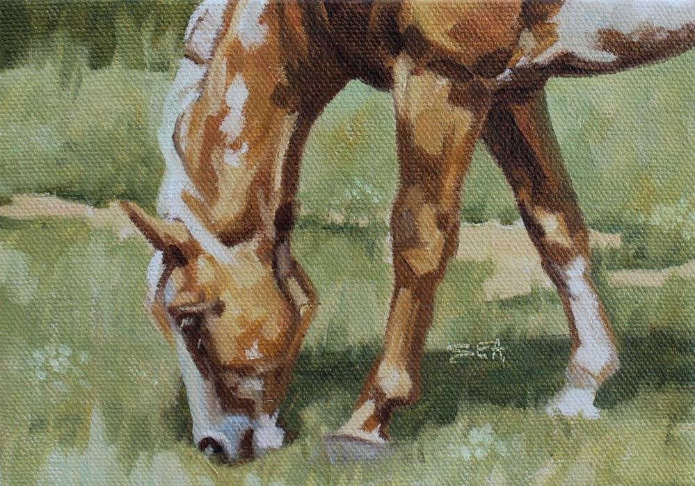 """Meadow VI"" original fine art by Susan Ashmore"