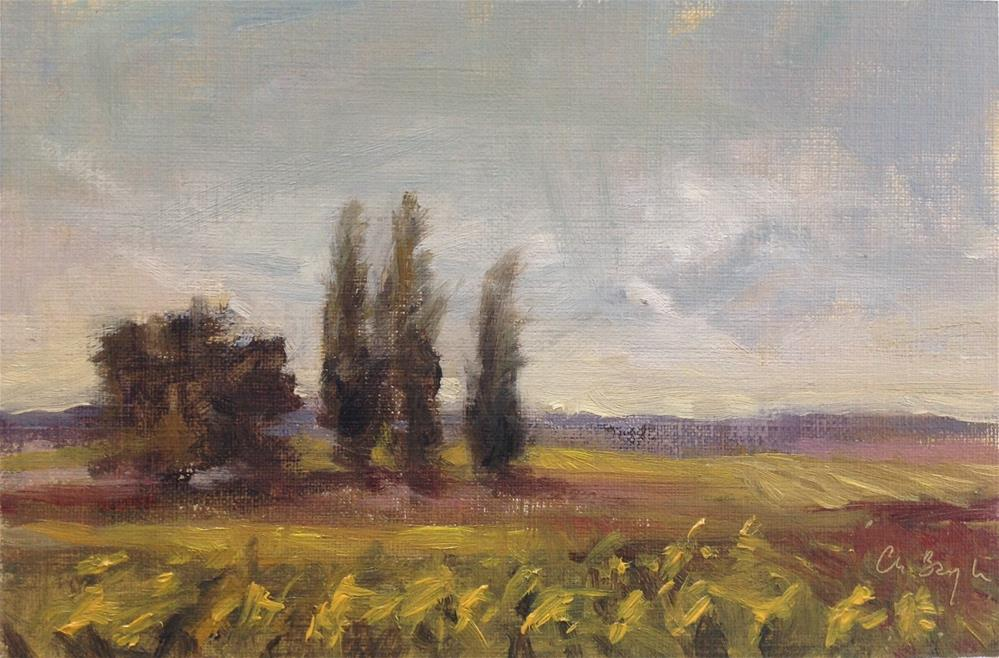 """""""Sunflowers fields, late afternoon"""" original fine art by Christine Bayle"""