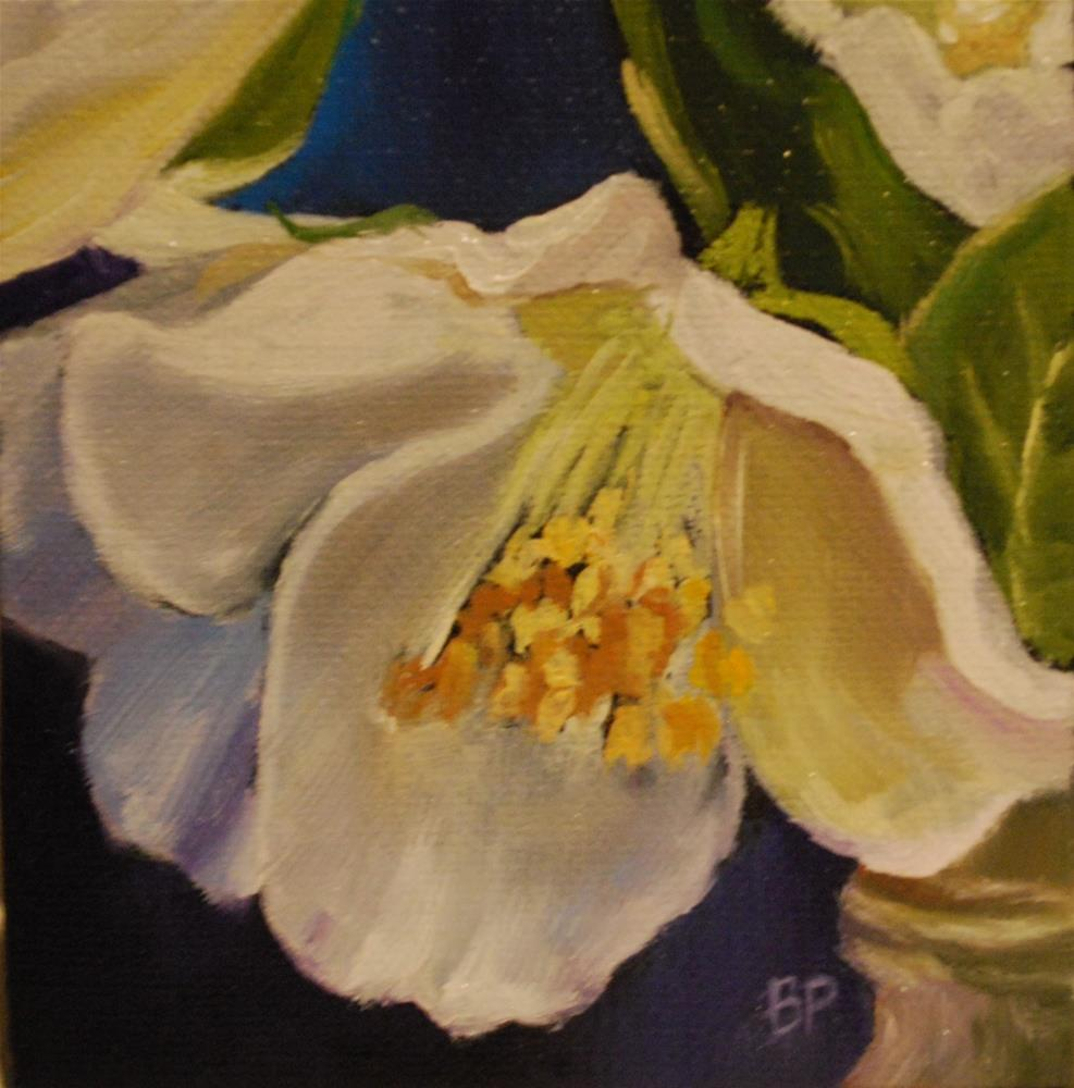 """English dogwood"" original fine art by Beverley Phillips"