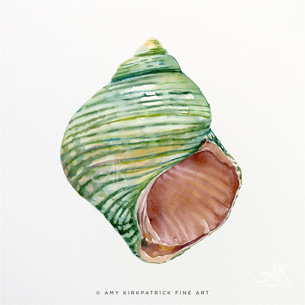 """GREEN TURBO SHELL #0455"" original fine art by Amy Kirkpatrick"