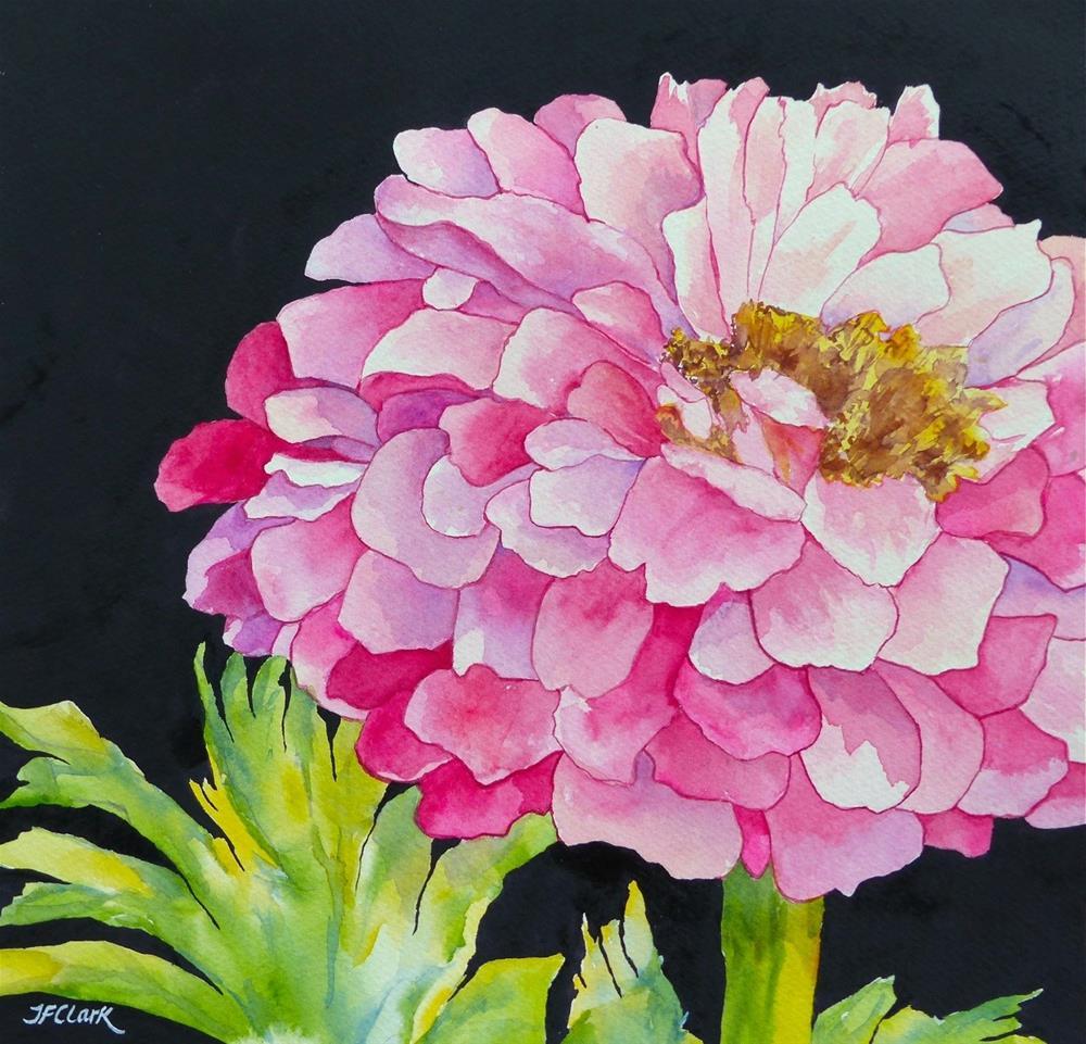 """""""Zealous"""" original fine art by Judith Freeman Clark"""