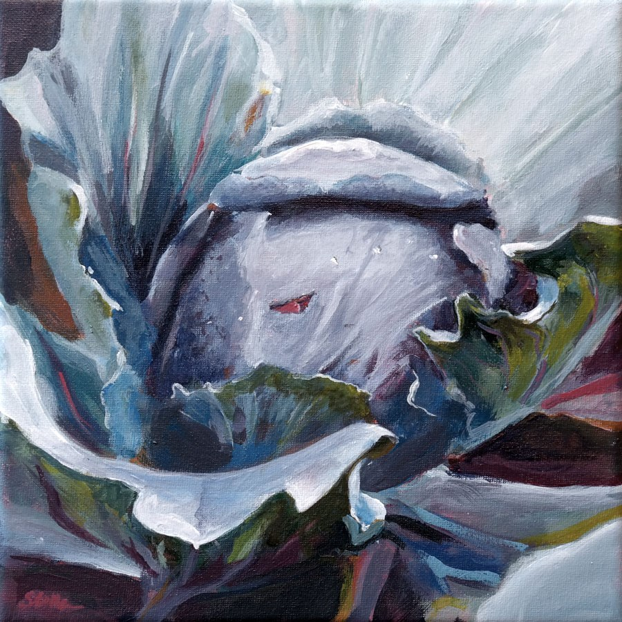 """1123 Cabbage"" original fine art by Dietmar Stiller"