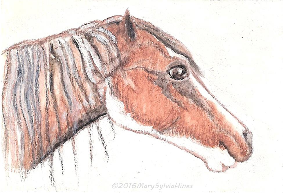 """""""ACEO Brown Horse v1"""" original fine art by Mary Sylvia Hines"""