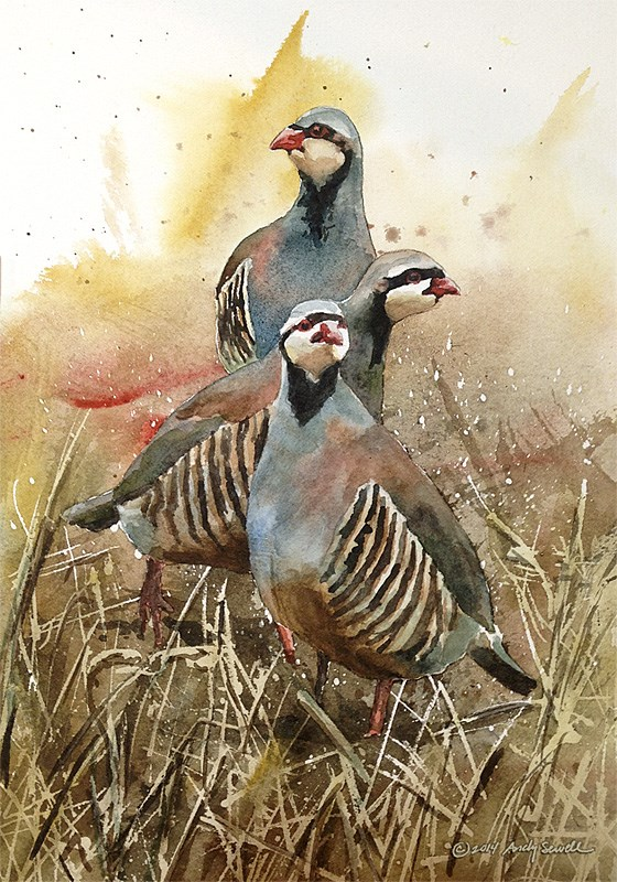 """""""The Three Chukateers"""" original fine art by Andy Sewell"""