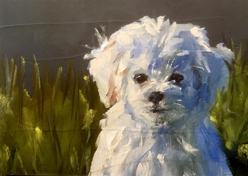 """Sunny Day Pup"" original fine art by Gary Bruton"