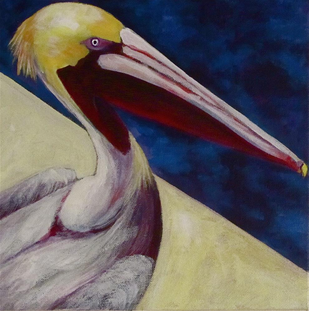 """Pelican Pete"" original fine art by Patricia MacDonald"