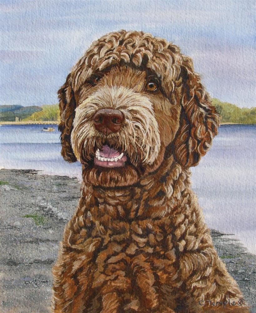 """Bailey"" original fine art by Catherine Temple"