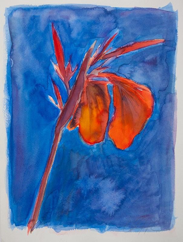"""Watercolor Illustrations"" original fine art by Clair Hartmann"