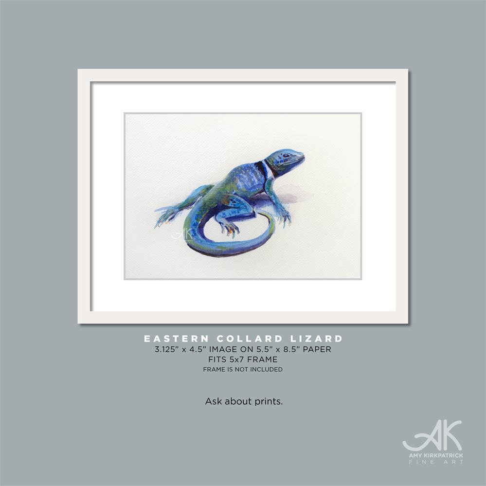 """""""EASTERN COLLARD LIZARD #0689"""" original fine art by Amy Kirkpatrick"""