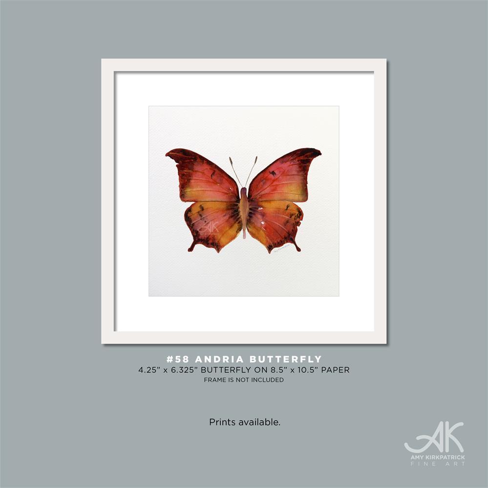 """#58 Andria Butterfly #0368"" original fine art by Amy Kirkpatrick"