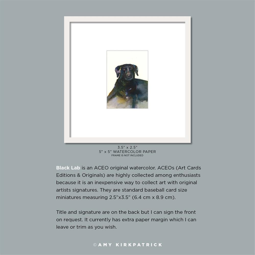 """BLACK LAB (ACEO) #0601"" original fine art by Amy Kirkpatrick"